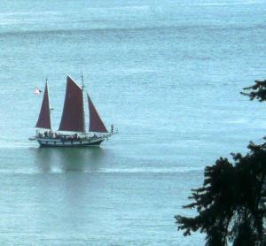 Sailboat cropped